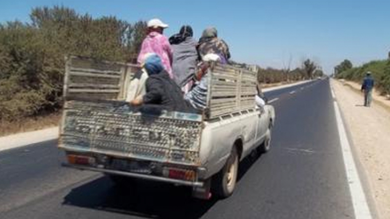 اجراءات استثنائية لنقل العاملات خلال المواسم الفلاحية