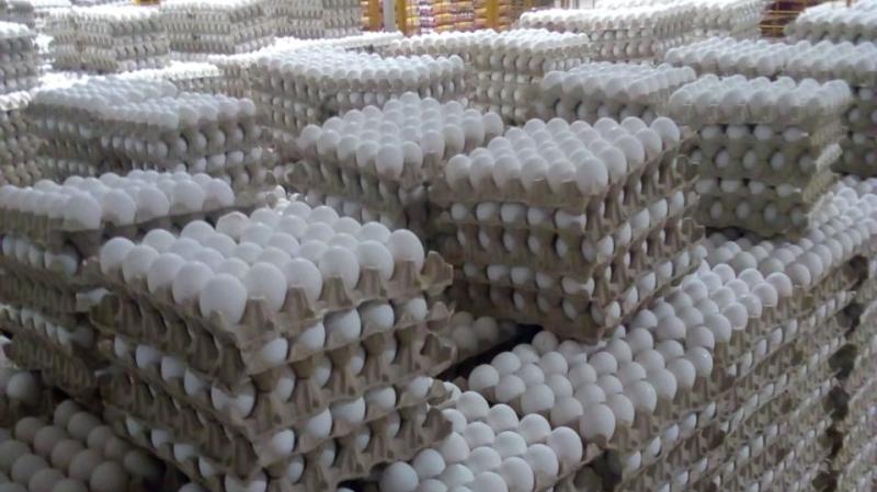 حجز مليون بيضة في مداهمات لمخازن إحتكارية