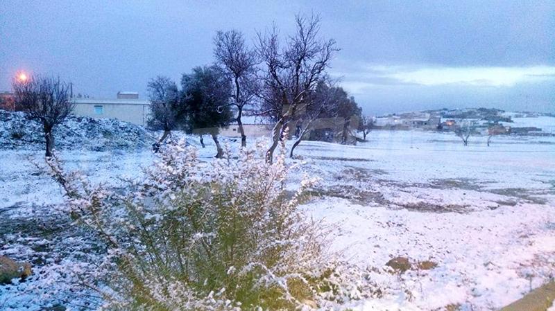 الكاف: تساقط الثلوج في ساقية سيدي يوسف
