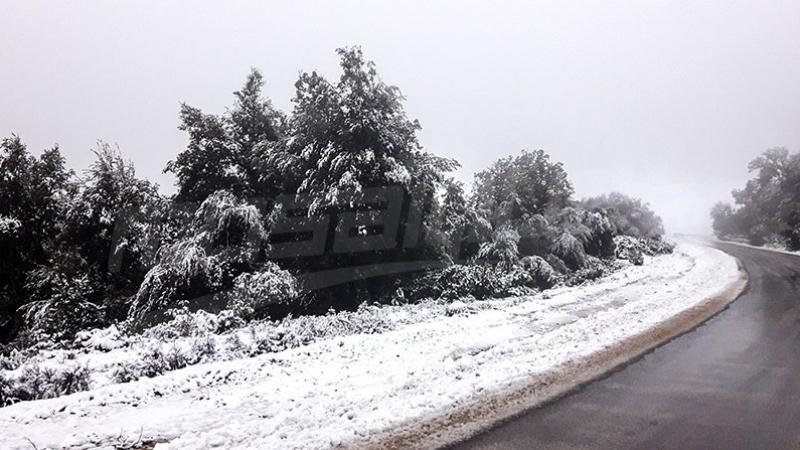 جندوبة: انقطاع حركة المرور بعدد من الطرقات بسبب الثلوج