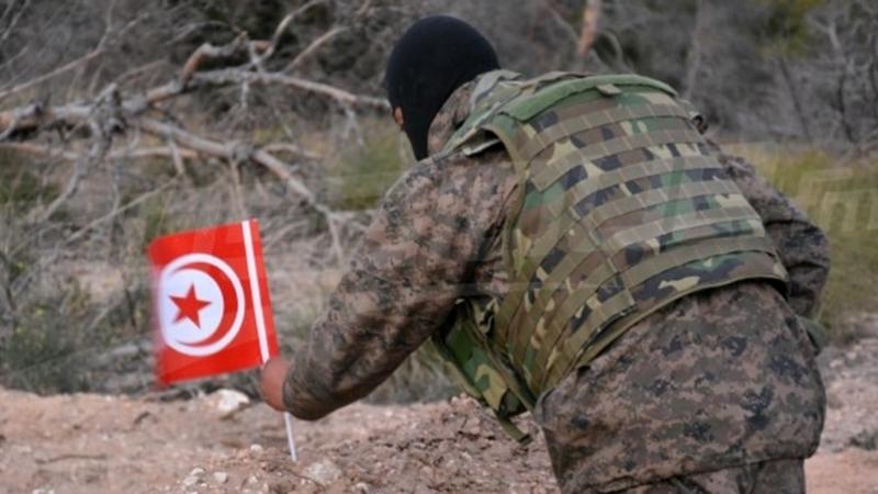 سيغما كونساي: المؤسسة العسكرية في الصدارة