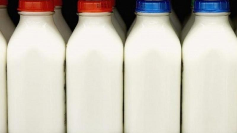 وزير التجارة: توريد الحليب لم يتجاوز 1.5% من إجمالي الإنتاج