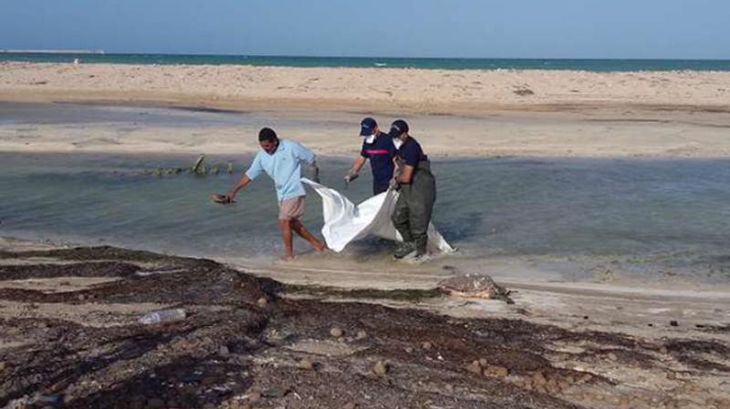 جثة أخرى لإمرأة في سواحل الشابة..