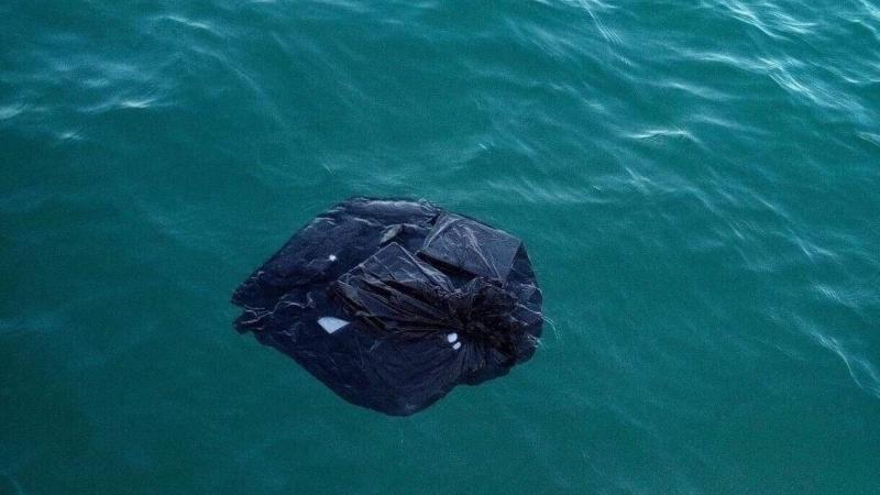 الحمامات: العثور على كميات من مواد التجميل في البحر