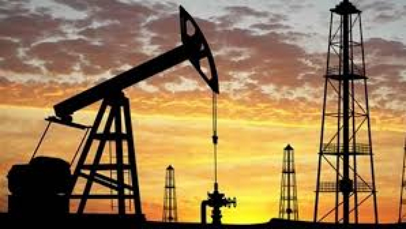 أعوان وإطارات شركة 'بيرنكو' النفطية في إضراب