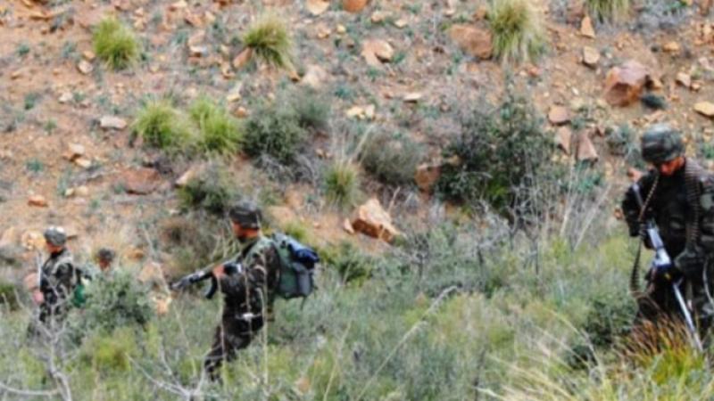الجزائر: إيقاف فرنسي مشتبه بحوزته أسلحة