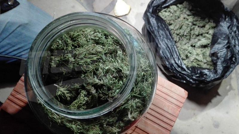 توزر: يزرعان الماريخوانا في المنزل ويروّجانها