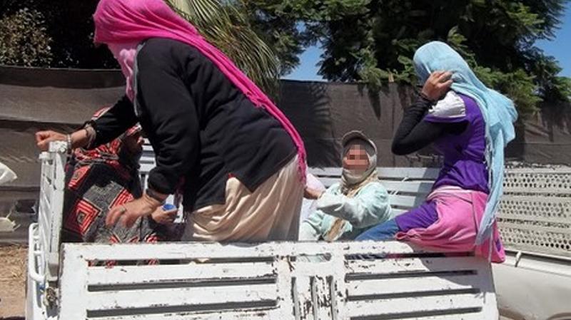 القيروان: عاملات فلاحة يسقطن من شاحنة..وإصابات خطيرة