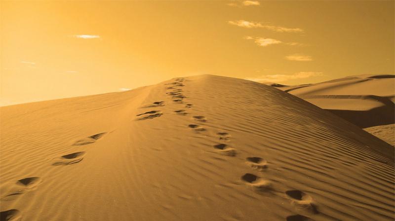 وفاة شاب عطشا في الصحراء