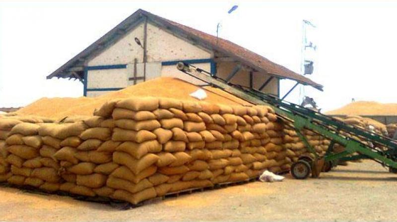 عودةالعمل في كل مراكزتجميع وتخزين الحبوب