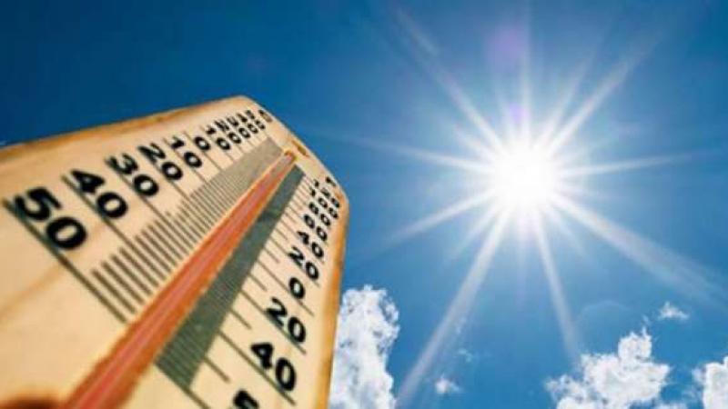 وزارة الفلاحة: دعوة إلى اليقظة المستمرة إثر ارتفاع درجات الحرارة