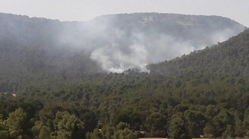 القصرين: تسجيل أكثر من 5 حرائق في يوم واحد