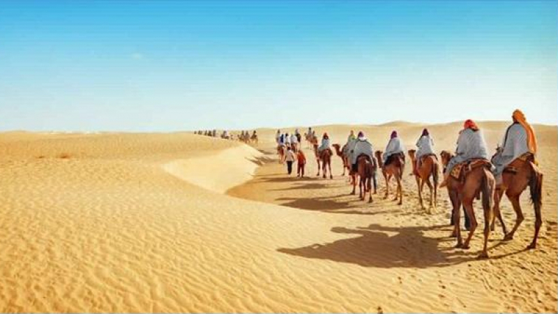 قبلي: إنتعاشة سياحية وزيادة بـ30 بالمائة في عدد الوافدين