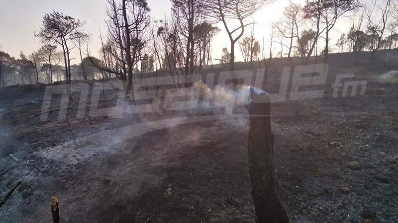 اندلاع حريق بغابة البندق ببني خيار