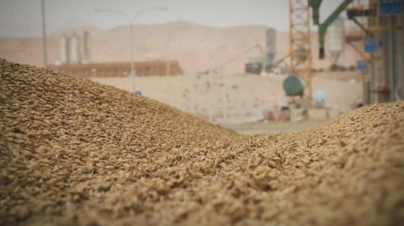 سمير الطيب يرد على فيديو بوعرادة بخصوص صابة القمح