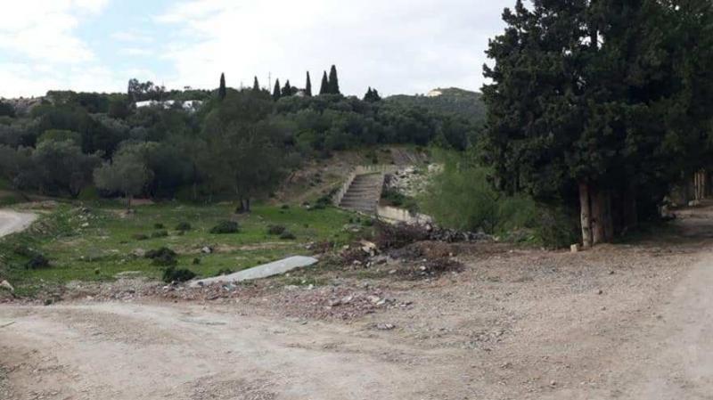 رواد: لوبيات تستولي على الغابة والبلدية تحفر خندقا لافشال مخططهم