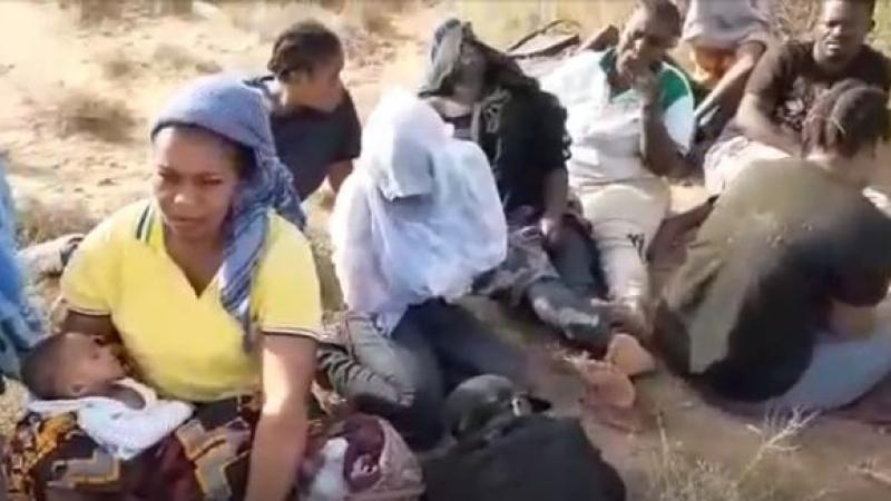 من بينهم رضّع..مهاجرون في قلب الصحراء بأمر من السلطات التونسية