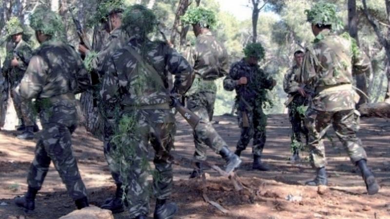 اعتقال إرهابي في الجنوب الجزائري