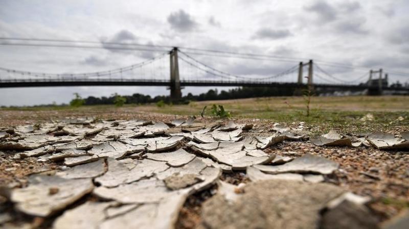 هولندا: وفاة حوالي 3 آلاف شخص بسبب موجة الحر