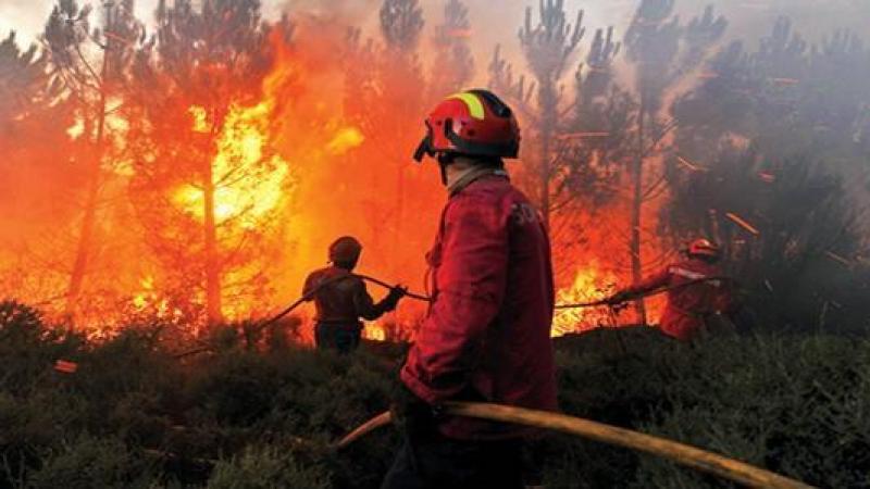 جبل الناظور: النيران تندلع من جديد