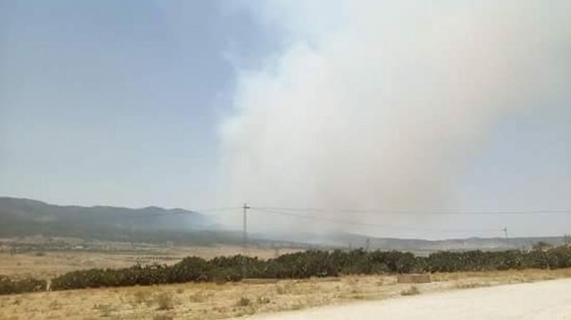 قصف مدفعي يستهدف إرهابيين في مرتفعات القصرين