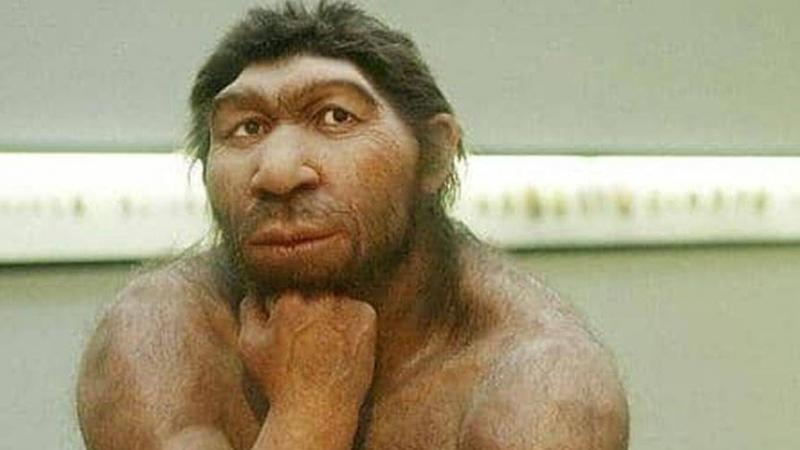 'مرض شائع' تسبب في انقراض الإنسان البدائي