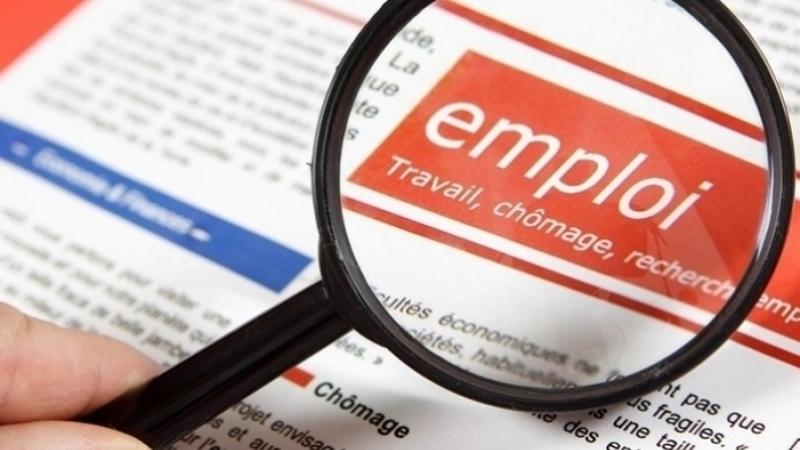 تقرير: 47 ألف وظيفة شاغرة والاختصاصات التقنية الأكثر طلبا