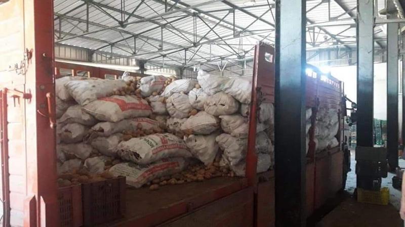 القصرين: حجز 17 طن من البطاطا و ضخّها في المسالك المنظمة