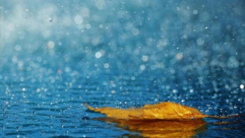 وزارة الفلاحة تحذر من التقلبات الجوية