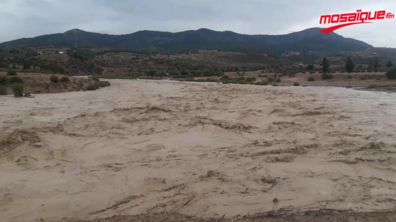 سليانة : ارتفاع منسوب وادي تاسة وانقطاع حركة المرور