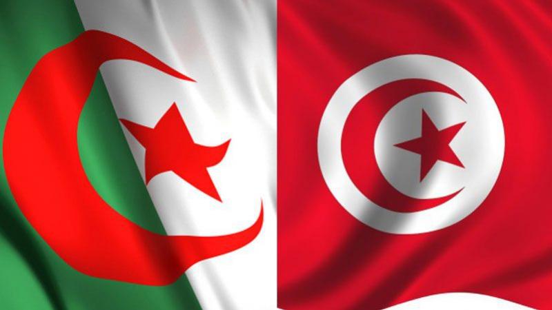 الجزائر تتراجع عن إلغاء التربصات العلمية في تونس