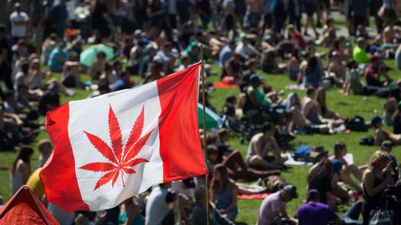 تقنين استهلاك القنب ينعش خزائن كندا