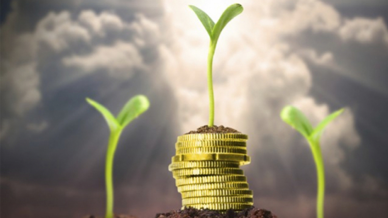 تراجع عمليات الاستثمار الفلاحي الخاص عدديا بنسبة 6.24  %