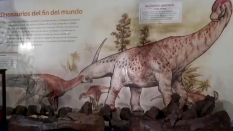 اكتشاف أنواع جديدة من الديناصورات