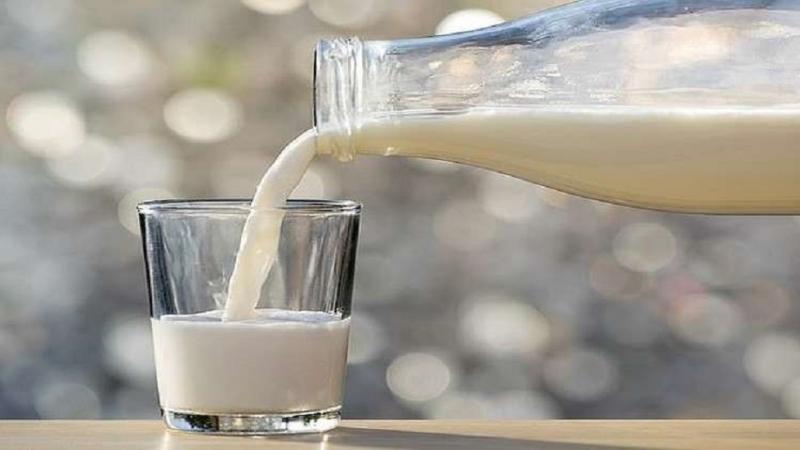 شرب الحليب