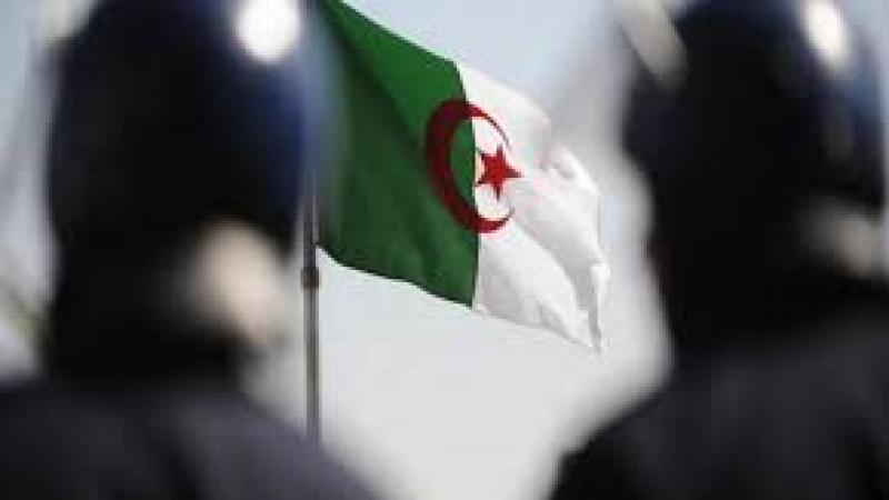 تحقيق- الجزائر