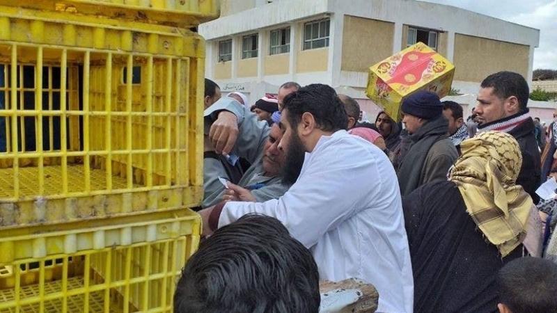 سخرية في مصر: قروض ميسّرة في شكل 'بط' !!