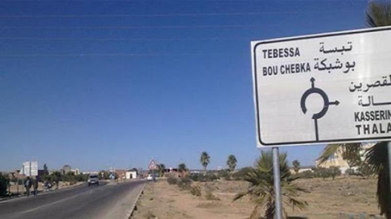 عودة 100 جزائري من العالقين في تونس إلى وطنهم