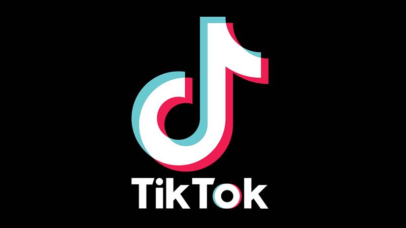 وكالة السلامة المعلوماتية تُحذّر من تطبيقة 'تيك توك'