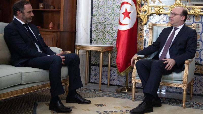 الفخفاخ وبرغاميني يتباحثان تعزيز التعاون بين تونس والاتحاد الأوروبي