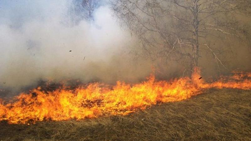 سبيطلة: اندلاع حريق في أرض فلاحية