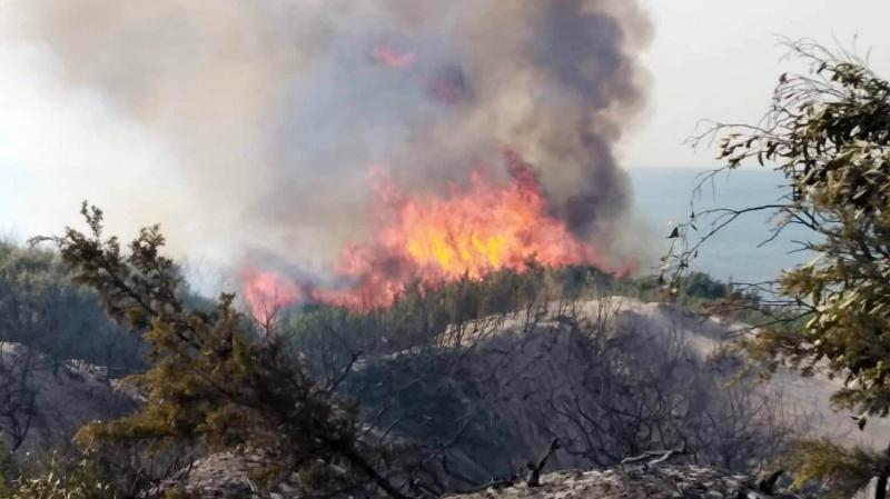 برج السدرية: إخماد حريق في جبل نينو