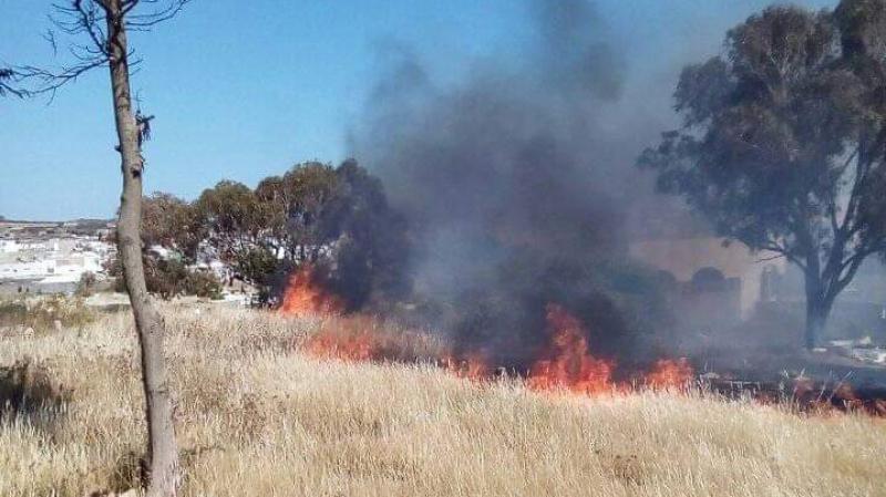 باجة: حريقان يأتيان على 9 هكتارات من القمح