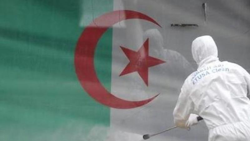 الجزائر تسجل أكبر حصيلة يومية للإصابات بكورونا