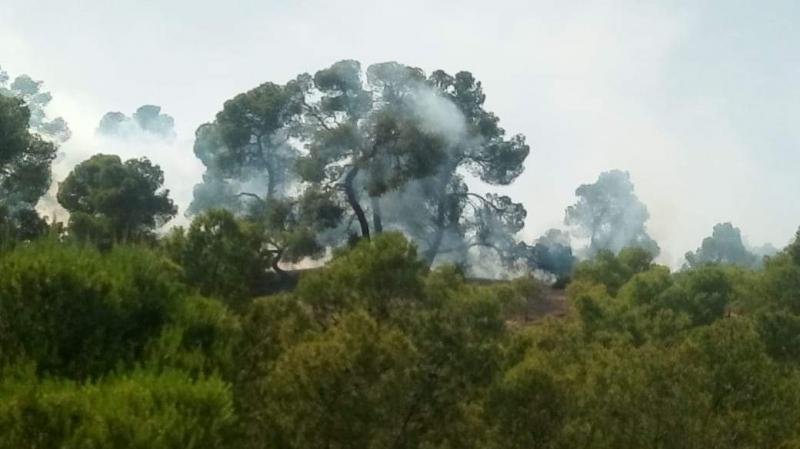 حريق في جبل الأخفاج بساقية سيدي يوسف