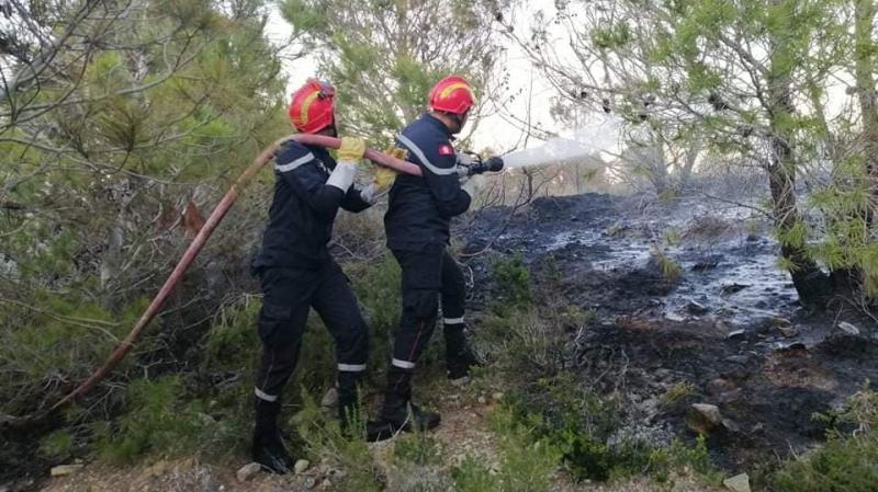 السيطرة على حريق جبل النحلي