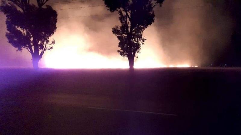 القصرين: النيران تأتي على أكثر من 3 هكتارات من الحلفاء