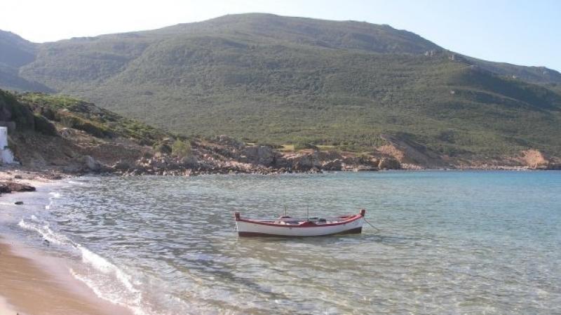 السباحة ممنوعة بسواحل تونس الكبرى وبنزرت وطبرقة