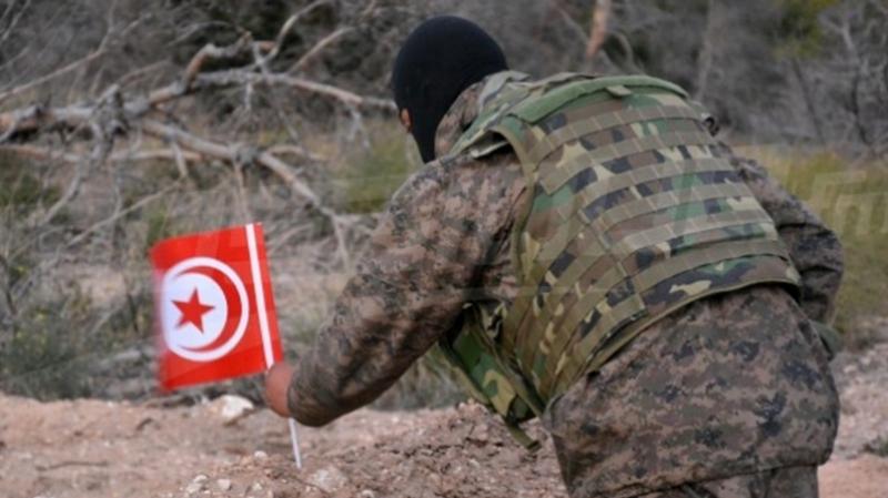 استطلاع رأي: الجيش يحظى بثقة أغلب التونسيين