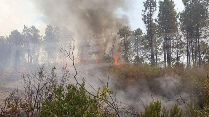تواصل الحرائق في ثلاث مناطق بجبال الكاف